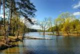 Лес Кратово озеро: описание, расположение. Как добраться до лес Кратово озеро?