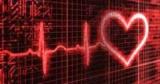 Почему фитнес-люди с сердечными проблемами и как это правильно делать