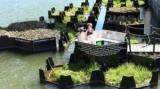 В Голландии построили парк из мусора в воде