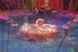 Цирк на воде в Красноярске: фантастический мир русалок и нимф