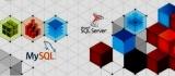 Реляционные СУБД: базы данных обзор, примеры